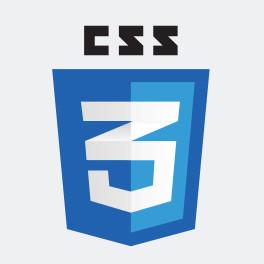 CSS3-Mark-Logo