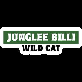 junglee-billi